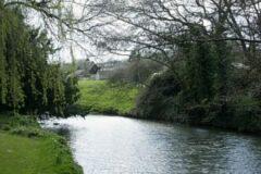 The River Chew