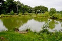 Lady Cross Farm