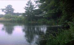 Longford Main Lake