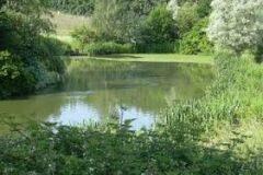 Priory Farm Lakes