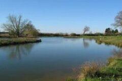 Tandridge Lake