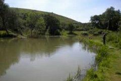 Arfleet Mill Lakes