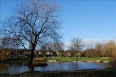 Charltons Pond