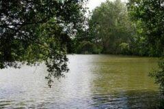 Hale Manor Lakes