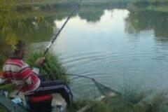 Harescombe Fishery