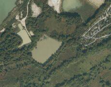 Heath Lake - Warmwell