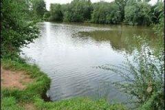 Pixley Pool