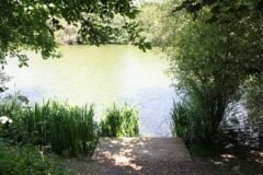 Rookley Country Park