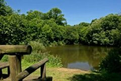 Sundridge Lakes