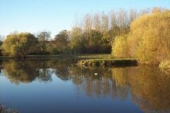 Vicarage Spinning Trout Fishery