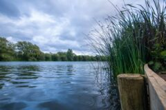 Bluebell Lakes